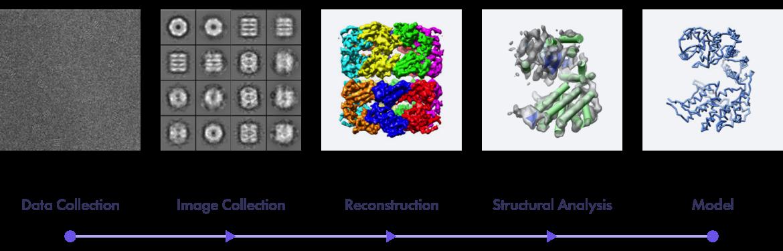 CryoEM Process